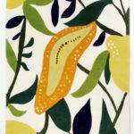 fruitgarden-fruitgarden-vit_500